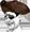 :fuck-that-bitch-pirate-yao: